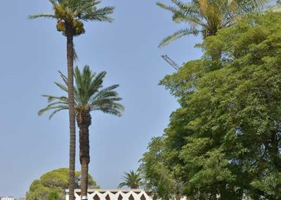 Ambassade Suisse à Alger